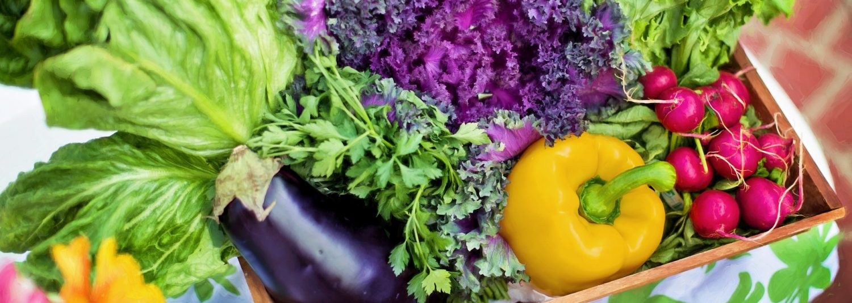 ◆Space結◆へようこそ 【食と体と心が結び付く 心地よい生活】