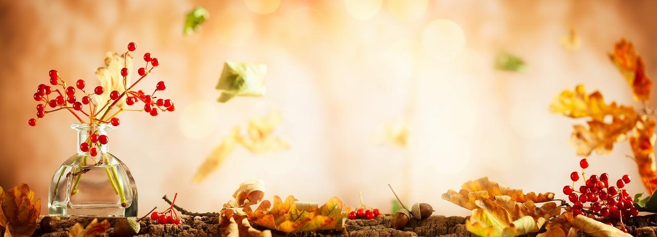 食と体とこころが結び付く 心地よい生活   ◆Space  結◆